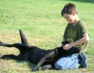 boy petting his black Lab