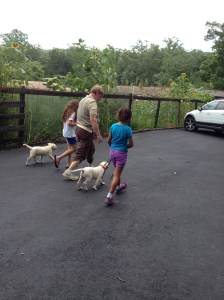 two children with adult teaching them how to walk their pups