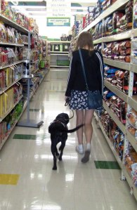 girl walking a service dog in a store