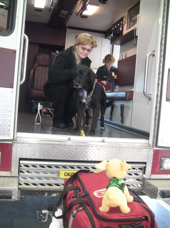 dog in ambulance with Snoopers watching